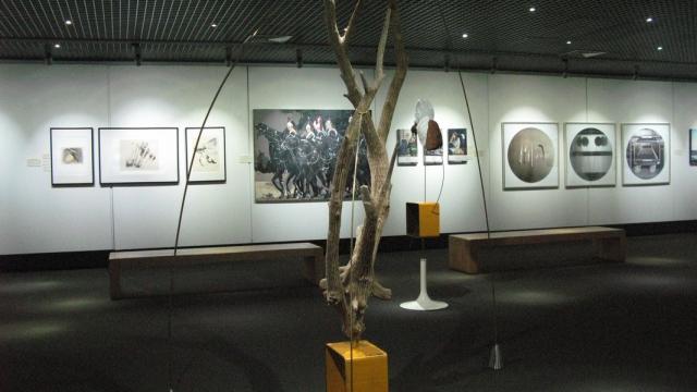 Carolina Piteira Exhibition Artis15 (2)