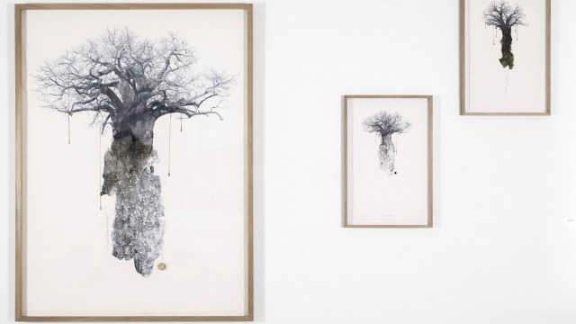 Carolina Piteira Exhibition The Encounter (6)
