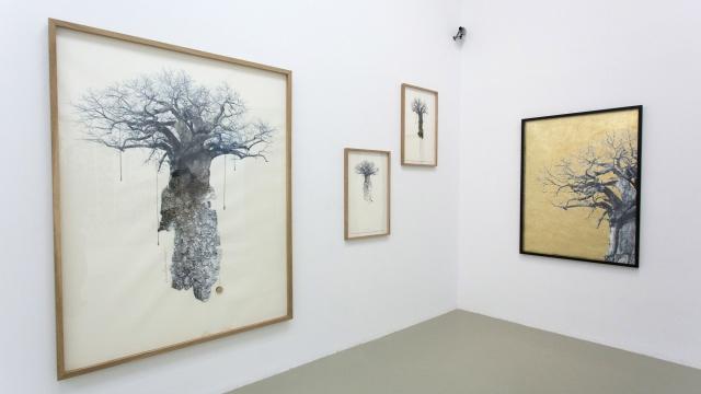 Carolina Piteira Exhibition The Encounter (5)