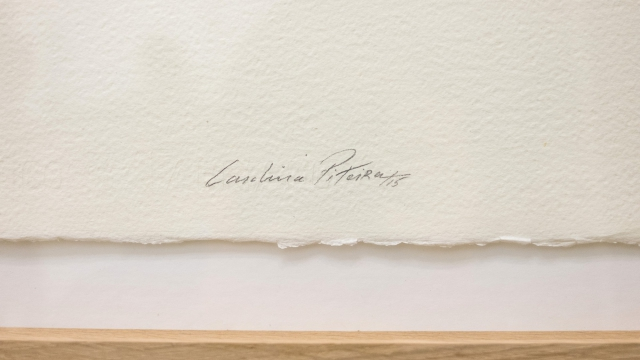Carolina Piteira Exhibition The Encounter (7)